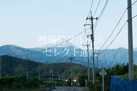 IMG_160603_02.jpg
