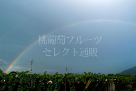 160704_01.jpg