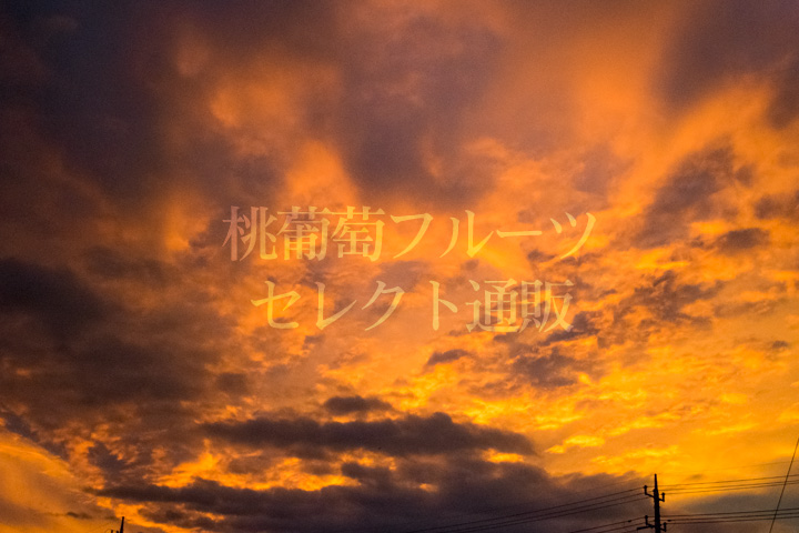 http://xn--pckxa0as5d4gj9j2056c98pch3ae14ehhk.com/blog/img/180708-02.jpg